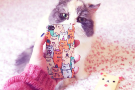 Furby VS la coque iphone