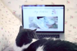 earl nouveau blog
