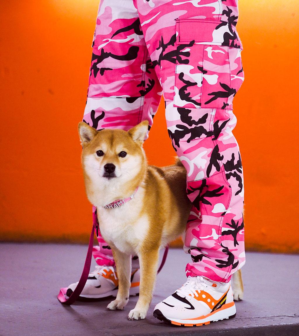 pink camo shiba inu saucony azura