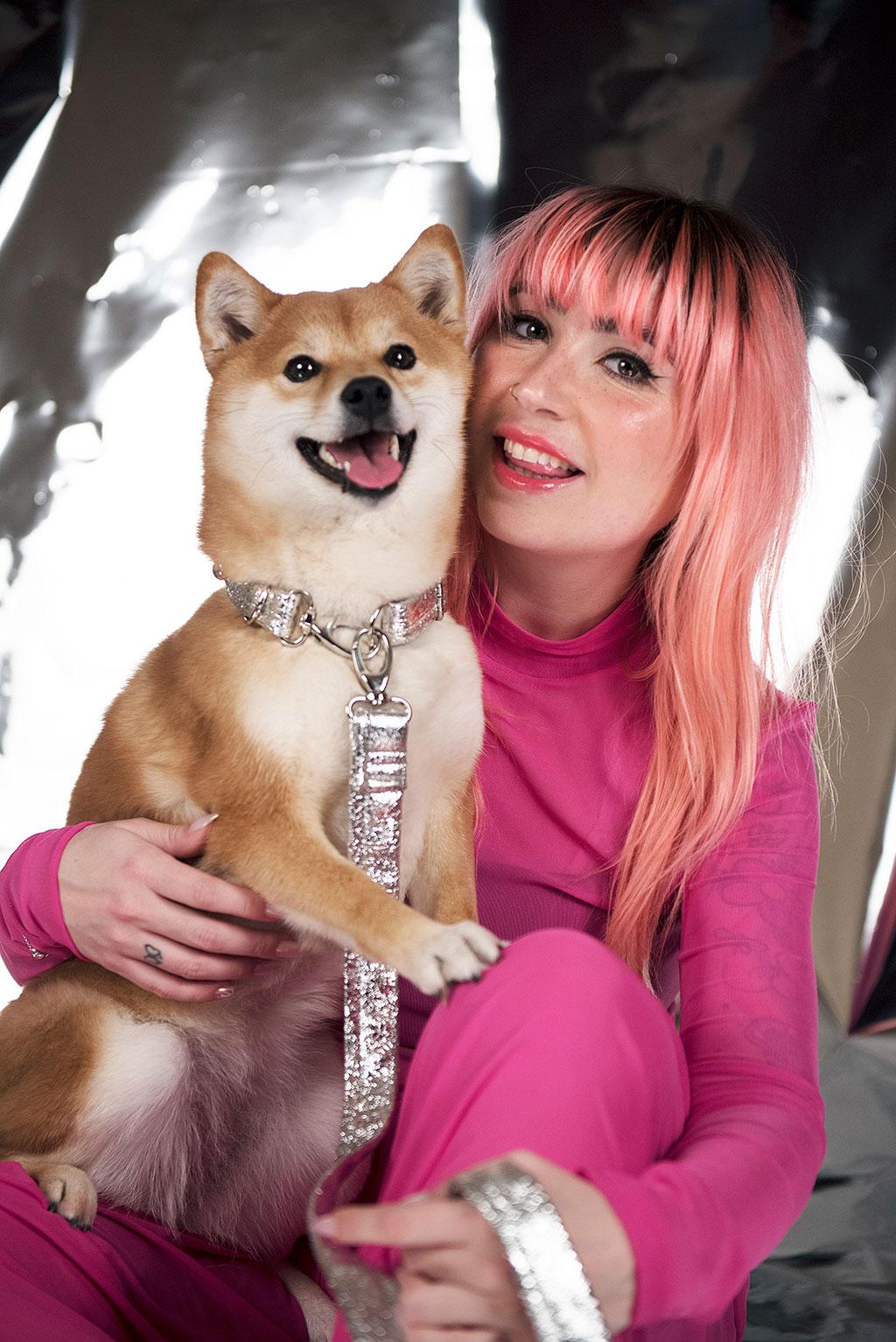 chien chien shiba inu